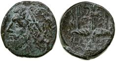 Ancient Coins - Syracuse in Sicily. Hieron II, 274 to 216 BC. AE Litra