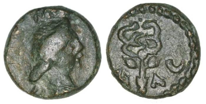 Ancient Coins - Antiochia ad Orontem, Seleucis & Pieria.  Time of Antoninus Pius. AE 11. Dated to AD 152/153.