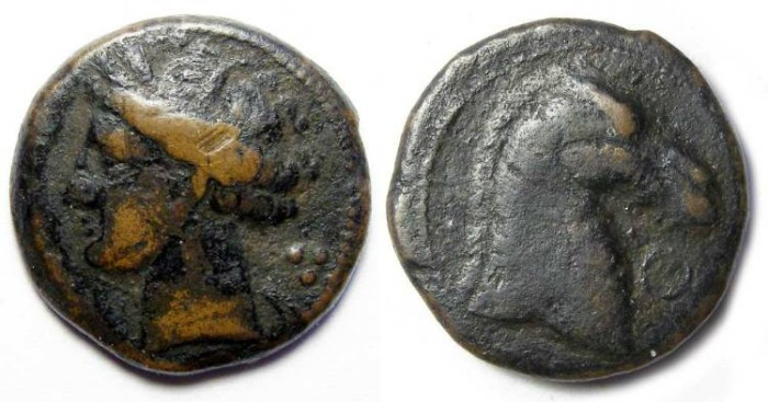 Ancient Coins - Zeugitana, Carthage. AE 20. ca. 264 to 241 BC (First Punic War period).