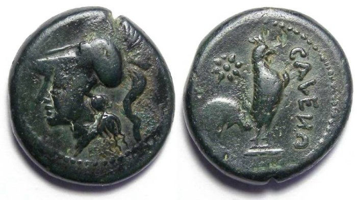 Ancient Coins - Cales in Campania, After 268 BC. AE 20. Roman issue of the First Punic war period.