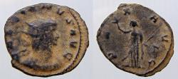 Ancient Coins - Gallienus (253-268). Antoninianus