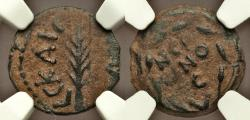 Ancient Coins - Judaea Porcius Festus (AD 59-62). AE prutah. NGC Money of the Bible: Issued under Nero, AD 59, palm.