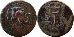 Ancient Coins - INDIA, INDO-GREEK: Demetrios I (c. 200-185 BC). AE Triple Unit, 11.42 g,Obv. Head of elephant right,