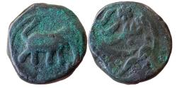 World Coins - INDIA, MYSORE KINGDOM: Haidar Ali (1761-1782 AD), AE Paisa (12,30gm), Balari (=Bellary) Mint. Elephant Advancing Right , , KM 2, Choice, Rare type.