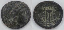 Ancient Coins - SELEUCIA - Sardes, Antiochos II (261-247 BC), AE17, Very Fine
