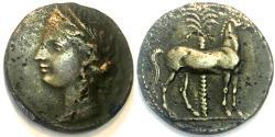 Ancient Coins - Zeugitana Carthage Billon 2 Shekels - 205-203 BC - SNG 351 - Punic coin