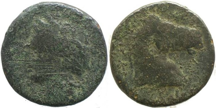 Ancient Coins - ZEUGITANIA, Carthage 300-264BC of Sardinia - Head of Tanit / Head of horse