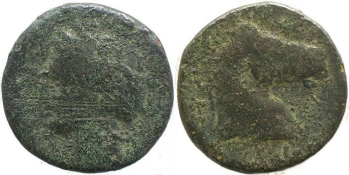 Ancient Coins - ZEUGITANIA, Carthage 300-264BC of Sardinia - Head of Tanit / Head of horse