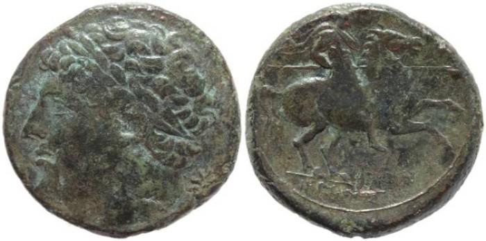 Ancient Coins - Sicily, Syracuse - Hieron II - 274-216 BC