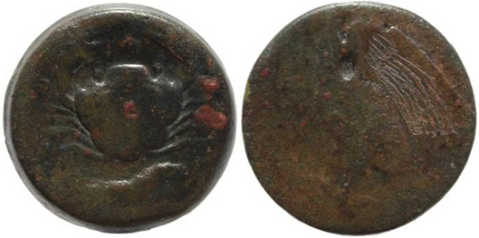 Ancient Coins - Sicily, Akragas Bronze coin
