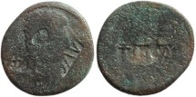 Ancient Coins - Countermarked coin of Augustus
