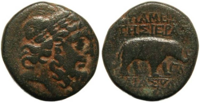Ancient Coins - Syria, Seleukis and Pieria Apameia - Zeus / Elephant