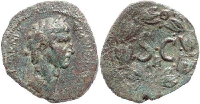 Ancient Coins - Expressive portrait of Nerva Ae31 - Antioch
