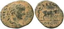Ancient Coins - Elagabalus - Petra, Arabia AE20