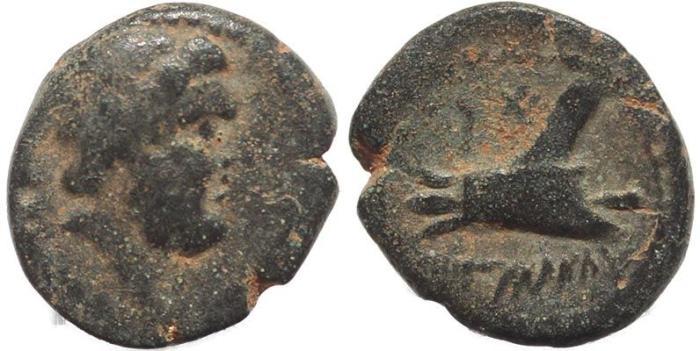 Ancient Coins - Phoenicia, Arados, 2nd Century BC - Galley