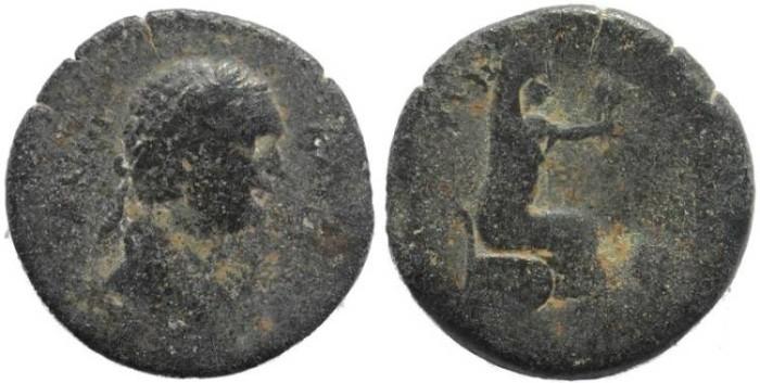 Ancient Coins - Roman Provincial coin of Domitian AE22 Cilicia, Flaviopolis.