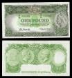 World Coins - AUSTRALIA Commonwealth of Australia ND (1961-1965) One Pound XF