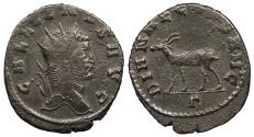 Ancient Coins - Gallienus 253-268 A.D. Antoninianus Rome Mint Near EF