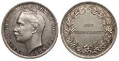 World Coins - GERMANY Hesse-Darmstadt Ernst Ludwig. 1894-1918 AR 33mm Medal AU
