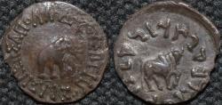 Ancient Coins - INDO-GREEK: Apollodotus I (Apollodotos I) ROUND Silver hemidrachm, Elephant/Bull type, RARE and CHOICE!