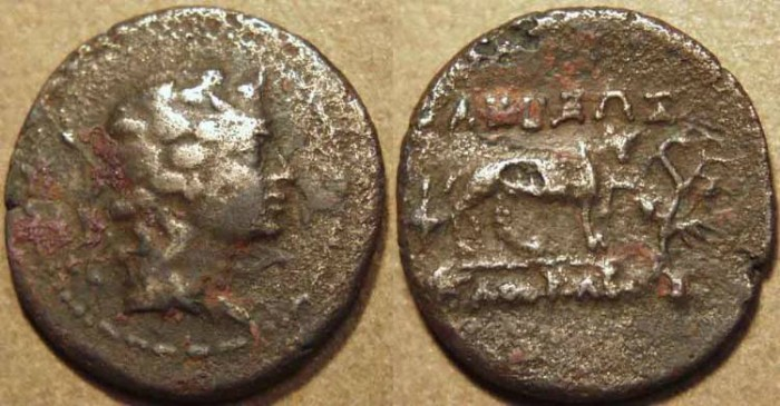 Ancient Coins - BACTRIA, AGATHOCLES or AGATHOKLES: Cupro-nickel Chalkous or unit of Dionysos/panther. RARE!