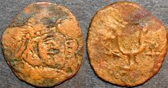 Ancient Coins - HEPHTHALITES, Yabghus of Bactria AE half drachm, VERY RARE!