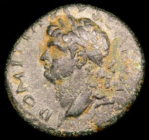 Ancient Coins - Domitian Ae21 - SC - Seleucis and Pieria-Antiochia ad Orontem