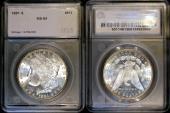 Us Coins - 1981s Morgan Dollar SEGS MS64