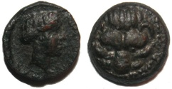 Ancient Coins - Bruttium Rhegion : Lion Scalp / Apollo