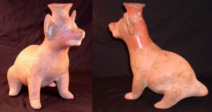 Ancient Coins - Colima Dog