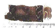Ancient Coins - Coptic Textile Fragment - AD400-600