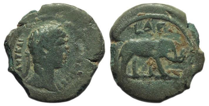 Ancient Coins - Hadrian, Alexandria Egypt Ae Obol : Elephant : Rare Year 10 Type