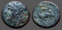 Ancient Coins - Syracuse, Sicily. Hieron II AE26 Hemilitron  Warrior on horseback rearing right holding lance.