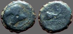 Ancient Coins - Seleukid. Demetrius I AE15 Horse Head left / Elephant Head rt