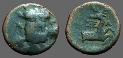 Ancient Coins - Selge, Pisidia AE13 Herakles facing / Stag