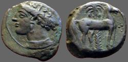 Ancient Coins - Zeugitania, Carthage Æ16 Hd of Tanit left / Horse stg rt in front of palm