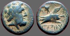Ancient Coins - Phoenicia, Arados AE16 Zeus / Galley Prow