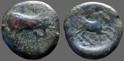 Ancient Coins - Arpi, Apulia AE21 Bull butting / Horse Jumping