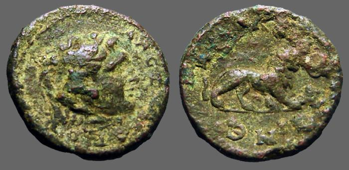 Ancient Coins - Thrace AE20 Hd of Herakles in lionskin / Lion adv rt.