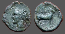 Ancient Coins - Zeugitana, Carthage.  Æ17 Wreathed head of Tanit left./ Horse standing right before palm tree.
