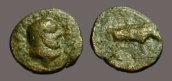 Ancient Coins - Trajan AE Quadrans Bust of Hercules / Boar rt.