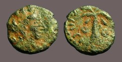 Ancient Coins - Tyre AE14 Hd. of Turreted Tyche/ Palm Tree