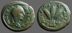 Ancient Coins - Severus Alexander AE18 Caesaraea-Eusebia.  Grain ears bound
