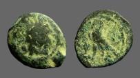 Ancient Coins - Ptolemy AE15 Dichalkon Hd of Zeus Ammon / Eagle left on thunderbolt.