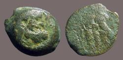 Ancient Coins - Ptolemy VI AE18 Zeus Ammon /  Double Eagle left.  Cyprus