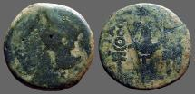 Ancient Coins - Spain, Patricia. Augustus AE31 Bare head left / Aquila between signa.