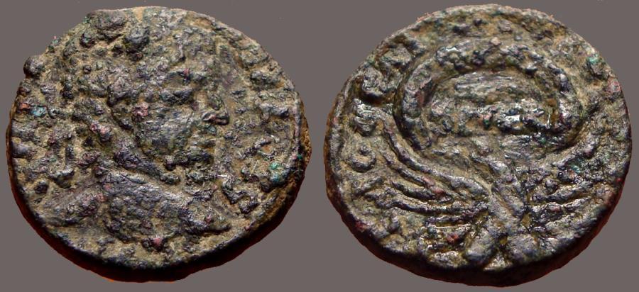 Ancient Coins - Severus Alexander AE20 Eagle supports wreath w. SC in it.  Samaria, Caesarea