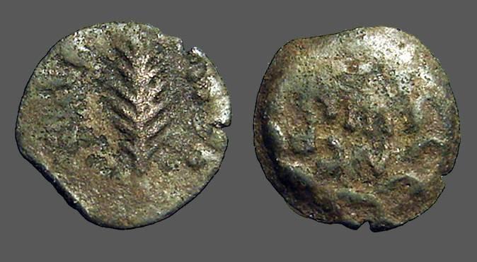 Ancient Coins - Porcius Festus AE prutah.  Palm Branch / Legend in wreath