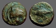 Ancient Coins - Thracian Chersonese AE11 Lion's scalp / Barley Ear
