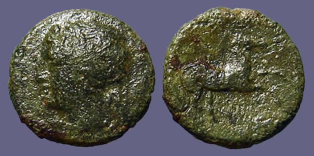 Ancient Coins - Sicily, Syracuse. Hieron II AE18 Hd. head of Apollo left / Horse prancing right.